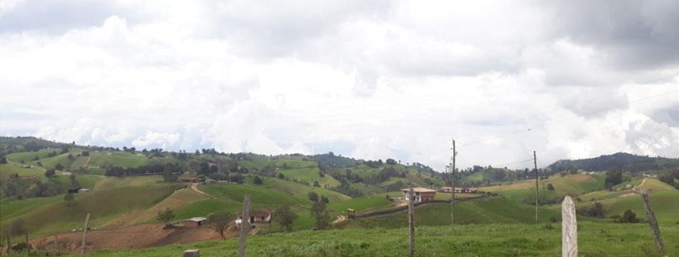 Pequeños productores recibirán apoyo para la adquisición de insumos agropecuarios