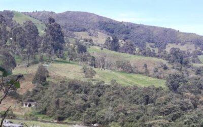 Importancia y función de las Áreas Protegidas en Colombia